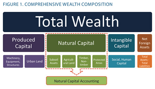 Comprehensive wealth composition