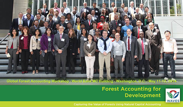 Forest Accounting Workshop
