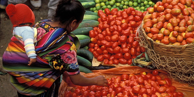 Accounts to Inform Food Security Issues | Wealth Accounting