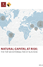 Cover of  Natural Capital at Risk