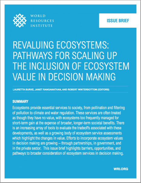 World Resources Institute Revaluing Ecosystems: Pathways for Scaling up the Inclusion of Ecosystem Value in Decision Making