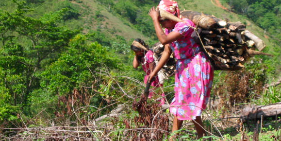 Women carrying firewood in Guatemala