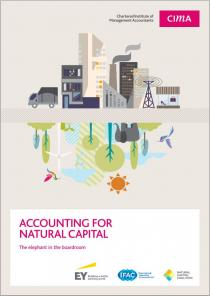 Accounting for Natural Capital: The elephant in the boardroom