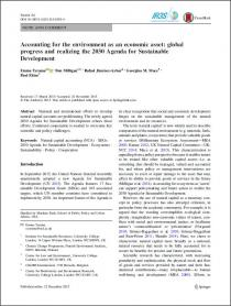 Accounting for the environment as an economic asset: global progress and realizing the 2030 Agenda for Sustainable Development