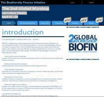 The Biodiversity Finance Initiative (BIOFIN): Presentations from the 2nd Global Worshop Los Cabos, Mexico, April 12-14