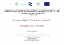 Ecosystem Natural Capital Accounting - Principles and Framework