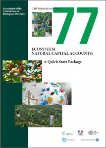 Technical Series No.77 - Ecosystem Natural Capital Accounts: A Quick Start Package