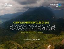 Las Cuentas Experimentales de los Ecosistemas en San Martín - Perú