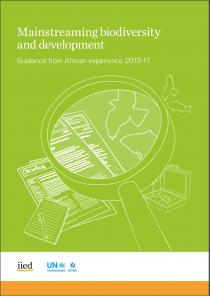 Mainstreaming biodiversity and development. Guidance from African experience 2012-17