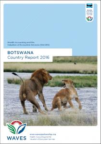 WAVES Botswana Country Report 2015