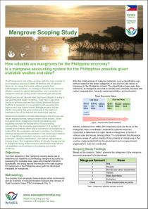Mangrove Scoping Study
