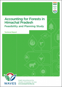 Accounting for Forests in Himachal Pradesh: Feasibility and Planning Study