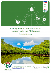 Valuing Protective services of Mangroves in the Philippines - Technical Report