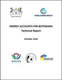 Energy Accounts for Botswana: Technical Report