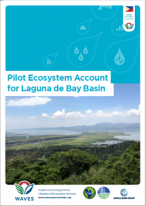 Pilot Ecosystem Account for Laguna de Bay Basin