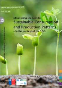 Monitoring the Shift to Sustainable Consumption and Production Patterns - in the context of the SDGs