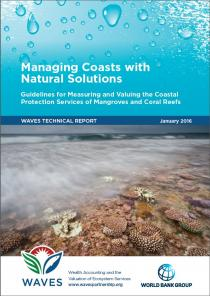 Managing Coasts with Natural Solutions