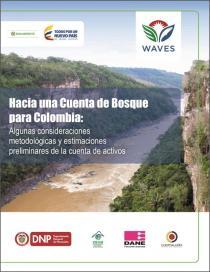 Hacia una Cuenta de Bosque para Colombia