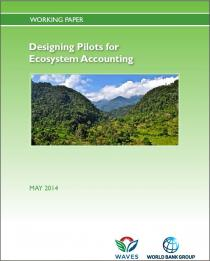 Designing Pilots for Ecosystem Accounts (Working Paper)
