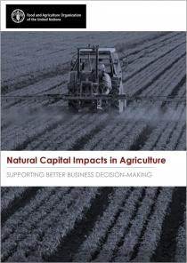 Natural Capital Impacts in Agriculture: Supporting better Business Decision-Making