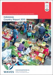 WAVES Indonesia Country Report 2015