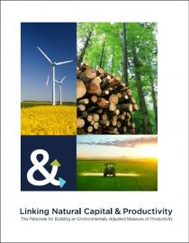 Linking Natural Capital and Productivity: The Rationale for Building an Environmentally Adjusted measure of Productivity