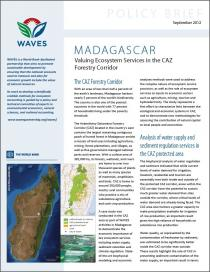 Policy Brief: Madagascar - Valuing Ecosystem Services in the CAZ Forestry Corridor