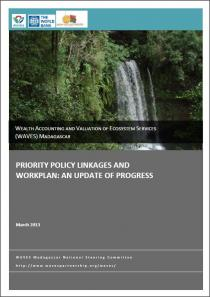 Priority Policy Linkages and Workplan: An update of progress