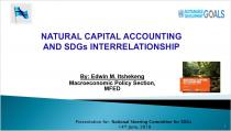 Natural Capital Accounting and SDGs Interrelationship
