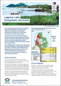 Laguna Lake Ecosystem Services