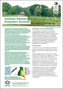 Southern Palawan Ecosystem Accounts (Tagalog)