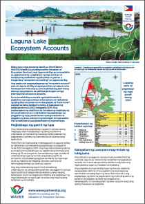 Laguna Lake Ecosystem Accounts (Tagalog)