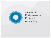 System of Environmental Economic Accounting