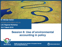 Use of environmental accounting in policy