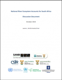 National River Ecosystem Accounts for South Africa: Discussion Paper