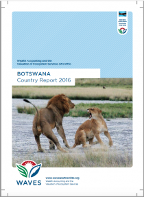 Botswana: WAVES Country Report 2016