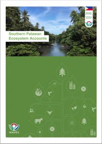 Southern Palawan Ecosystem Accounts: Executive Summary