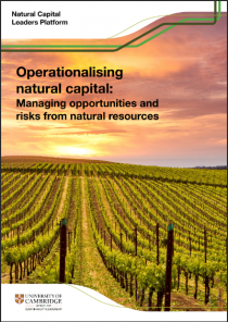 Operationalising natural capital: Managing opportunities and risks from natural resources