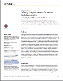 Defining Ecosystem Assets for Natural Capital Accounting