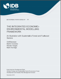 The Integrated Economic-Environmental Modelling Framework: An Illustration with Guatemala's Forest and Fuelwood Sector