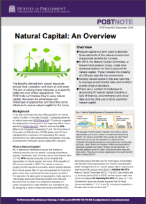 Natural Capital: An Overview
