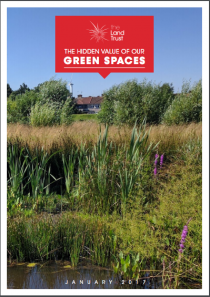 The Hidden Value of Our Green Spaces