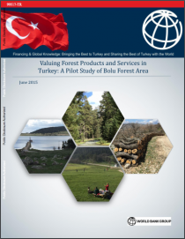 Valuing Forest Products and Services in Turkey : A Pilot Study of Bolu Forest Area