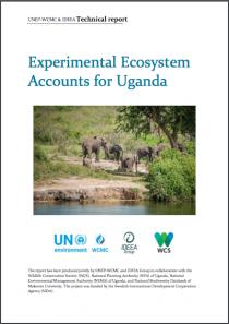 Experimental Ecosystem Accounts for Uganda