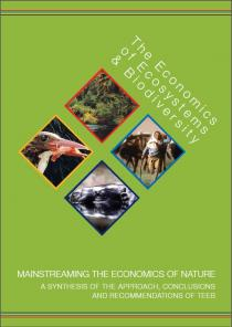 Mainstreaming the Economics of Nature: A synthesis of the approach, conclusions and recommendations of TEEB