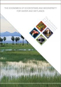 The Economics of Ecosystems and Biodiversity for Water and Wetlands