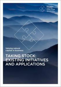 Taking Stock: Initiatives and Applications