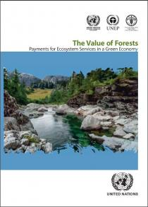 Value of Forests: Payments for Ecosystem Services in a Green Economy