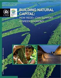 Building Natural Capital - How REDD+ Can Support a Green Economy