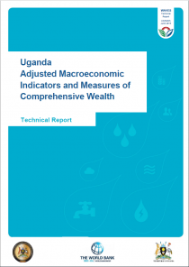 WAVES-Adjusted Macroeconomic Indicators and Measures of Comprehensive Wealth